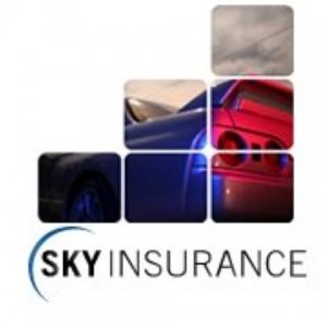 Sky Insurance Sponsors Black Sun Racing S Supercharged V8