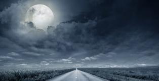 Halloween - Road trip